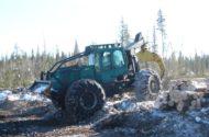 horse logging 012